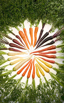 220px-Carrots_of_many_colors