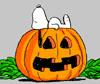 Snoopy-Pumpkin